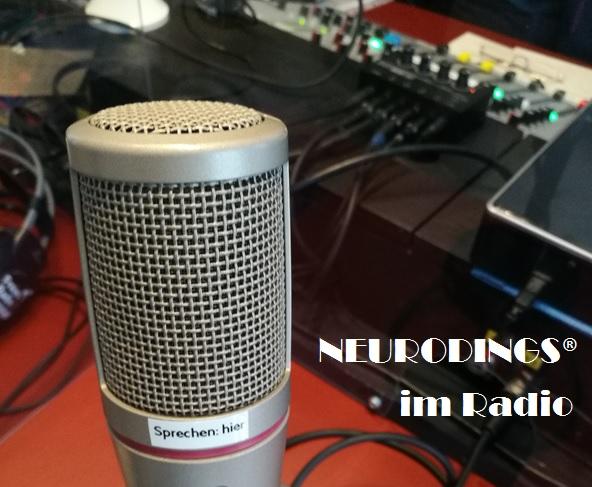 Interview für Radio Freistadt