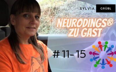 Youtube Neurodings zu Gast #11-15